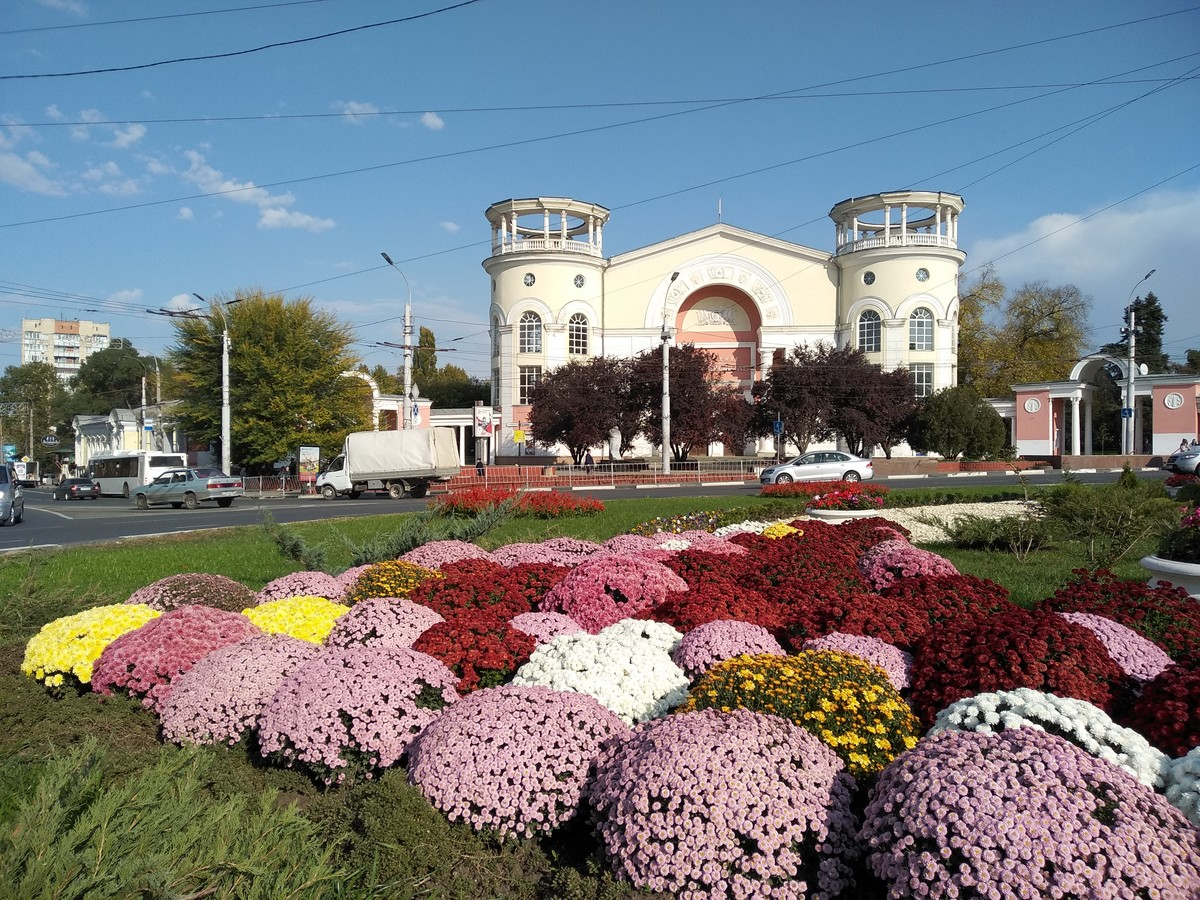Осень в Симферополе. Хризантемы на площади Советской