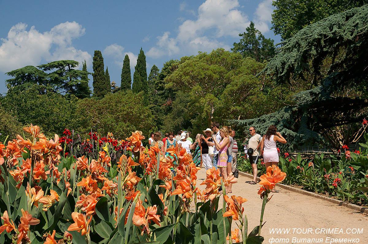 В Никитском ботаническом саду  проходит 57 выставка канн.
