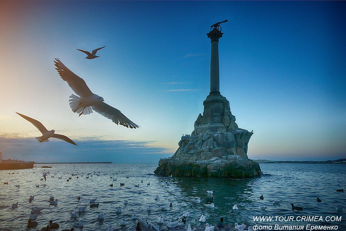 Зима. Севастополь. Птичье царство.