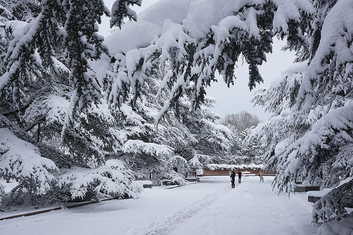 Крым буквально завалило снегом! Сугробы более четверти метра!