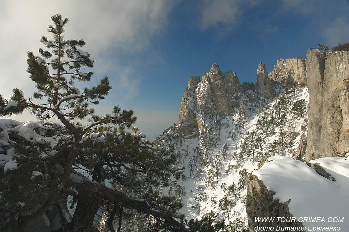 Крым на выходные в конце декабря 2020 слегка припорошило снегом...