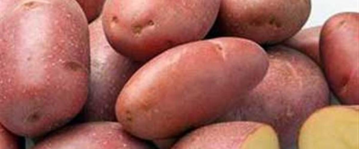 Сорт картофеля 'Крымская роза' . Секреты выращивания, покупки и готовки. Подбор вин в регионах Крыма