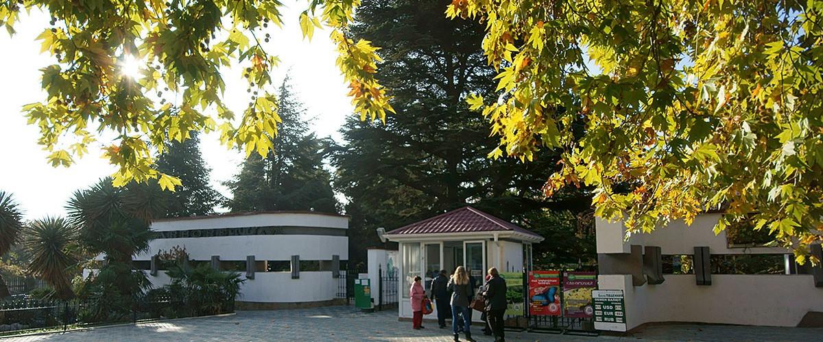 Первый день зимы по-крымски:  днем до +10оС тепла!