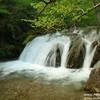 Водопады Крыма ожили после июньских дождей 2021г.  На природе свежо и прекрасно!