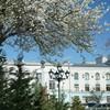Весна наконец-то победила холода! В Крыму - теплый, цветущий апрель 2021.